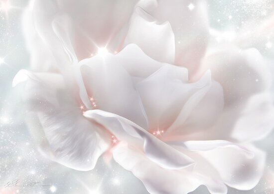 Surprise Rose by Svetlana Sewell