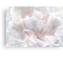 Surprise Rose Canvas Print
