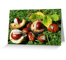Colourful conkers! Greeting Card