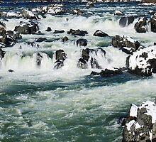 Great Falls, VA by Bine
