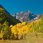 Meadow View of the Maroon Bells by nikongreg