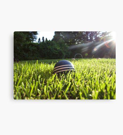 croquet ball Canvas Print