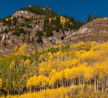 Gold and Granite by Greg Summers