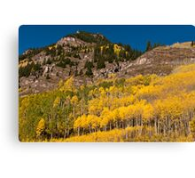 Gold and Granite Canvas Print