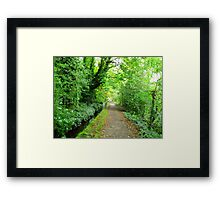 A walk in the countryside Framed Print