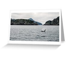 Swimming Through the Water Greeting Card