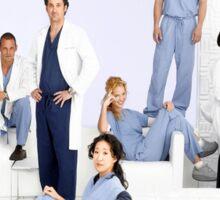 Grey's Anatomy Season 2 Sticker