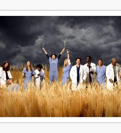 Grey's Anatomy Season 3 Sticker
