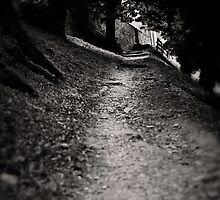 Uphill by vividpeach