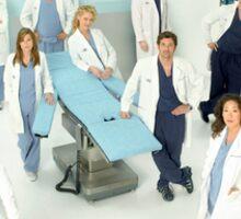 Grey's Anatomy Season 5  Sticker