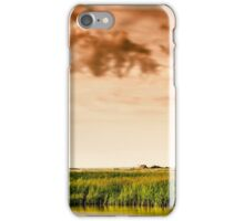 Baltic Sea beach on the island Poel iPhone Case/Skin