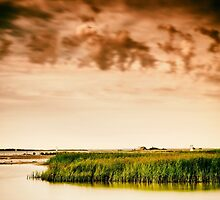 Baltic Sea beach on the island Poel by novopics
