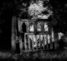 Dare you walk beyond the gate..... by paradox0076