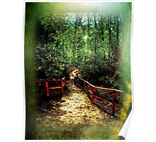Spring Fenced Pathway Poster