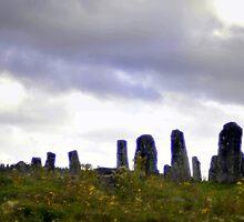 Dream Landscape - Ancestral Fields by HELUA