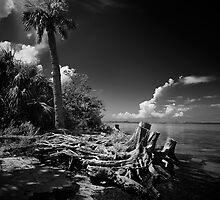treasure island by james smith