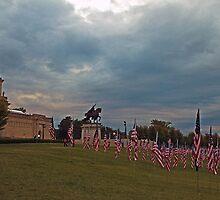 Memorial Flags by Carol Bock