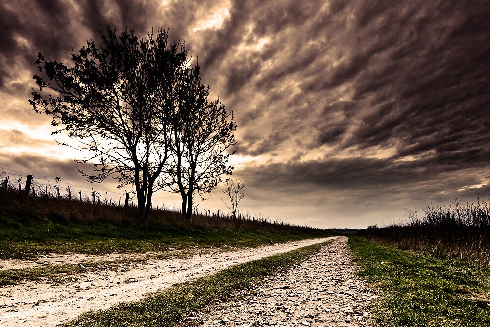 The Old Chalk Road by Leon Ritchie