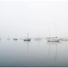 Foggy Morning Boats, Morro Bay by Rob Bannister