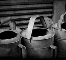 Watering Cans by Michael  Herrfurth