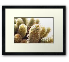 Watch Out For Pricks Framed Print