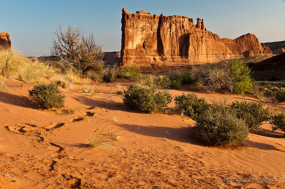 Foot Steps At Arches by nikongreg