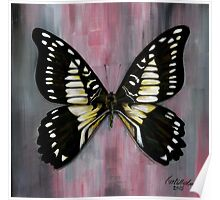 Butterflies Collection: Black butterfly Poster