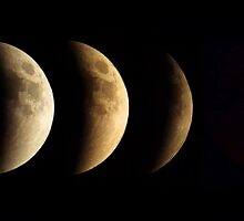 Lunar Eclipse, Super Moon, Blood Moon Phases, 2015 by PhotosByTrish