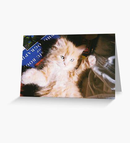 Warm Fuzzies Greeting Card