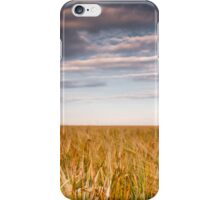 Gerstenfeld iPhone Case/Skin