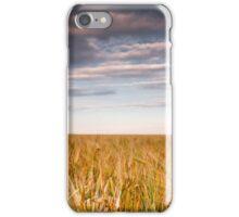 Gerstenfeld iPhone Case/Skin