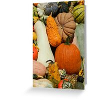 out of my gourd Greeting Card