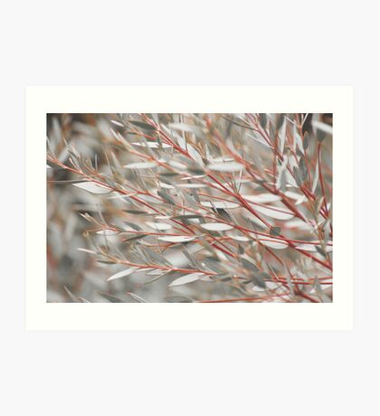 Lost in the Shrubs Art Print