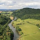 Green Countryside of Symonds Yat by Grace Johnson