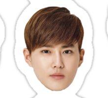 Exo Heads Sticker