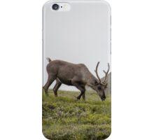 Spirit Animal iPhone Case/Skin