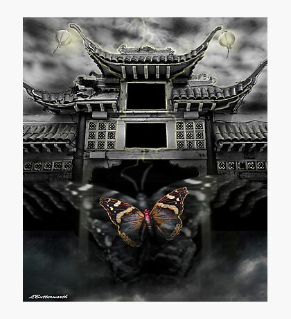 THE BUTTERFLY EFFECT (Does the flap of a butterfly's wings in China set off a tornado in Texas) Photographic Print