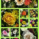 Floral Collage by kathrynsgallery