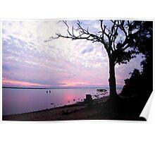 Sunset fishing Eli creek Poster