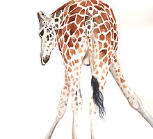 Giraffe by Louise De Masi