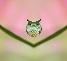 Dew Drop Design ;-  Most products . by relayer51