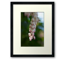 HEATHER Framed Print
