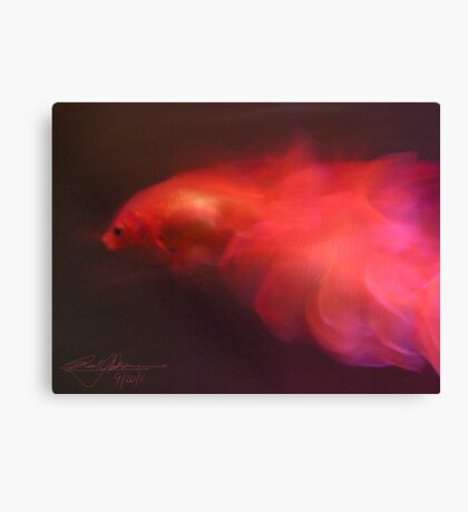 Leaping Fins Canvas Print
