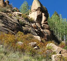Rock Face by Bill Hendricks