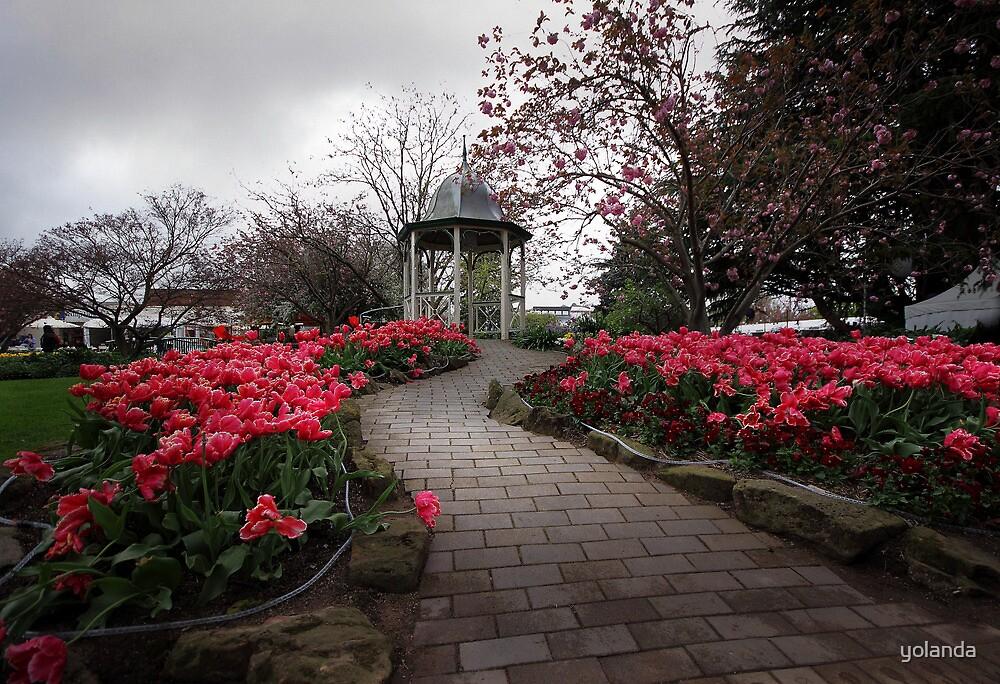 Up the Garden Path by yolanda