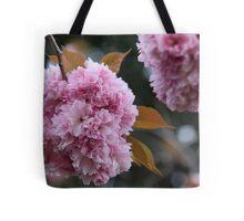 Pink Pom Poms Tote Bag