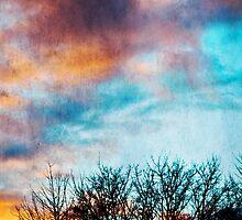 February Sky by Denise Abé