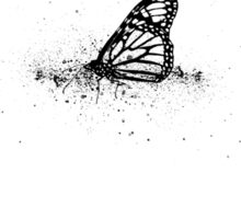 butterfly ink lithograph Sticker