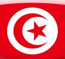 Tunisia Flag Glass Oval Die Cut Sticker Sticker
