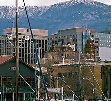 Victoria Dock, Hobart—Kodachrome 64 by Brett Rogers